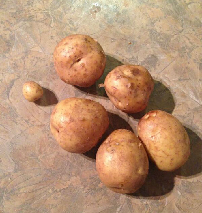 So I Asked My Husband To Buy 6 Potatoes