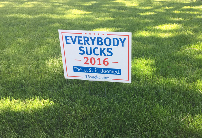 33 Funny Voting Signs Express What People Really Think About These Elections