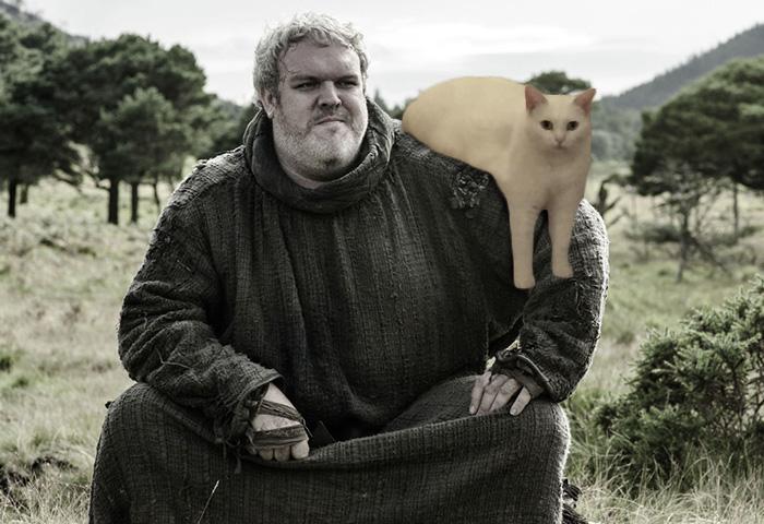 Hodor Left The Kid, Took The Cat Instead