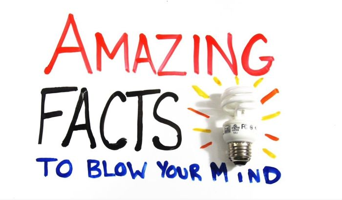 5 Amazing Facts To Blow Your Mind
