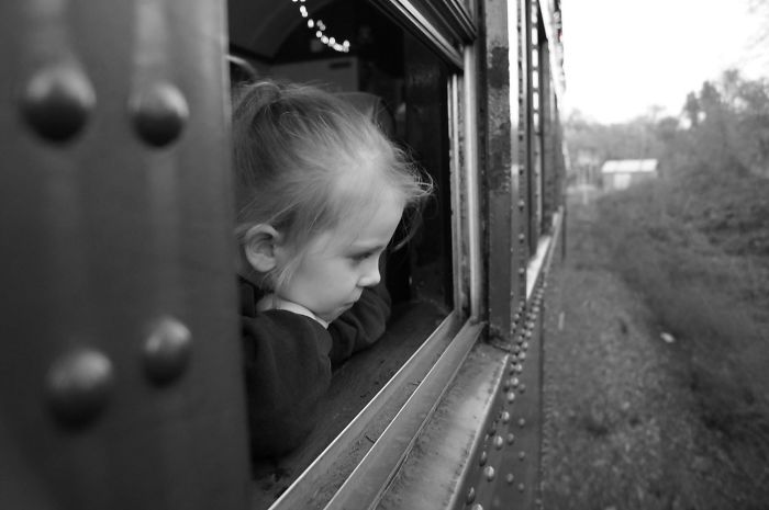The Skunk Train At Christmas