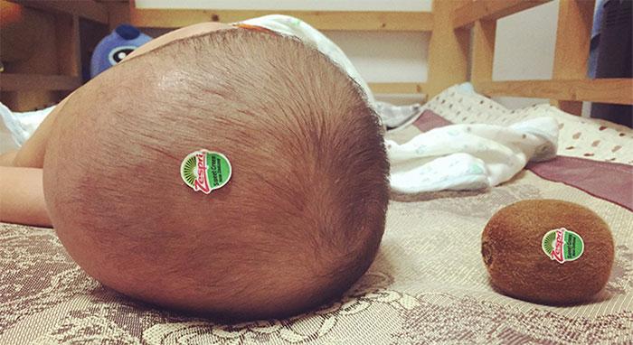 kiwi-baby-head-1