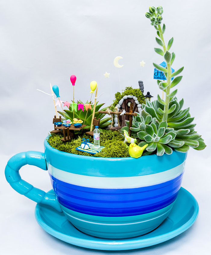 I Create Magical Fairy Gardens With Real Plants