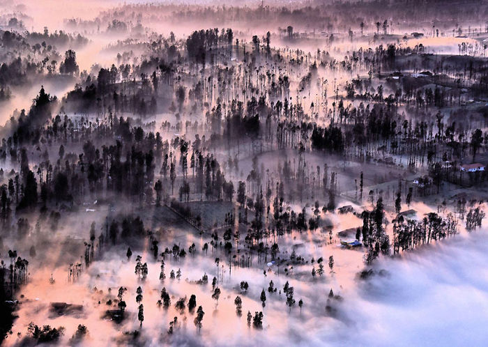 Misty At Cemoro Lawang, Indonesia