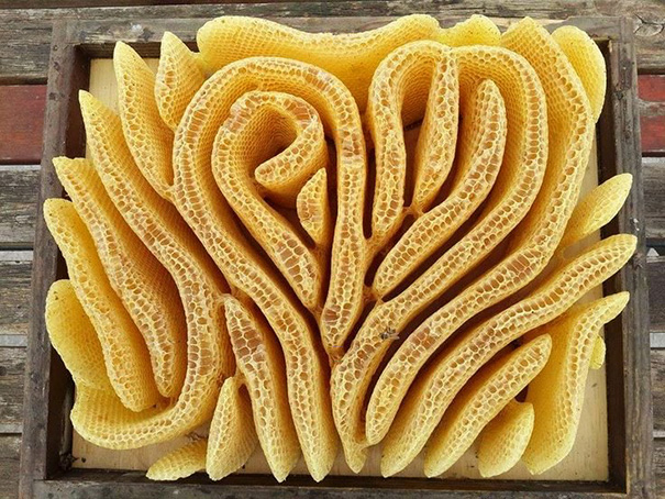 Beautiful Honeycomb