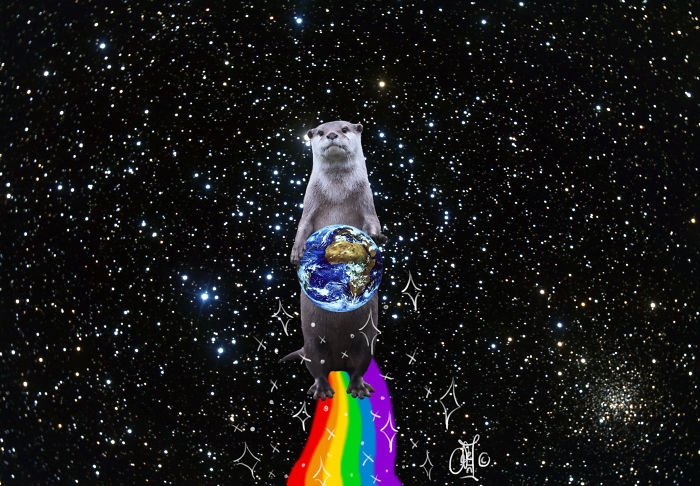 Nyan-otter By Genmaycha / Y0k0z