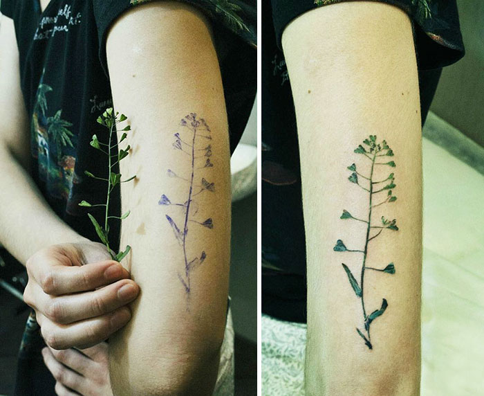 plant-tattoos-leaves-flora-botanical-fingerprint-rit-kit-rita-zolotukhina-5