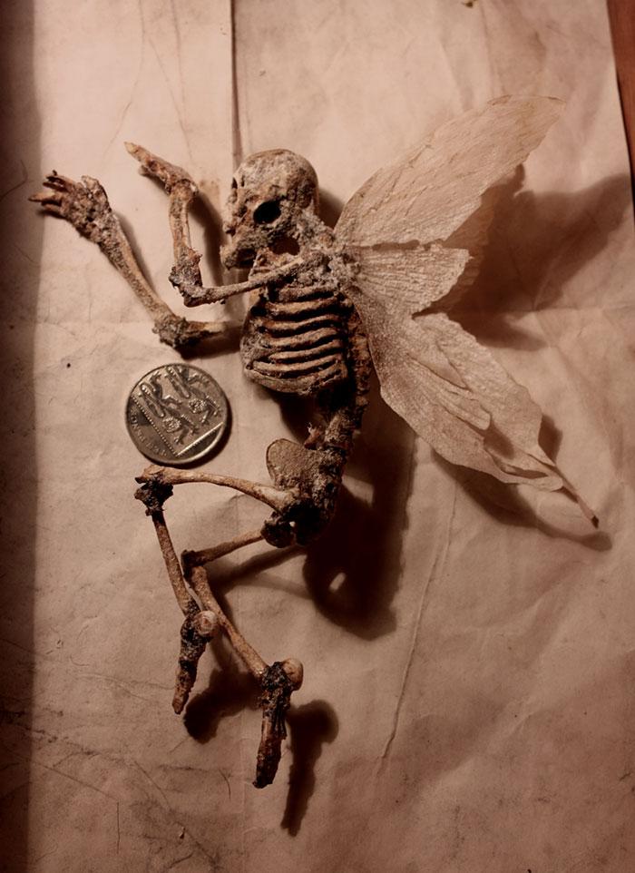 skulls-skeletons-thomas-theodore-merlin-home-london41