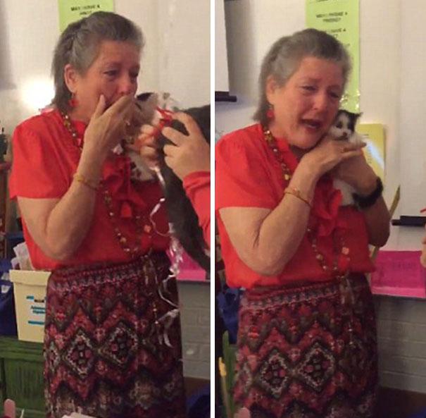 students-give-kittens-teacher-2