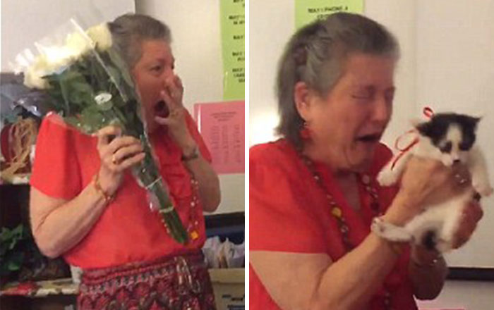 Teacher Lost Her 16 y/o Cat, So Her Students Surprised Her With 2 Rescue Kittens
