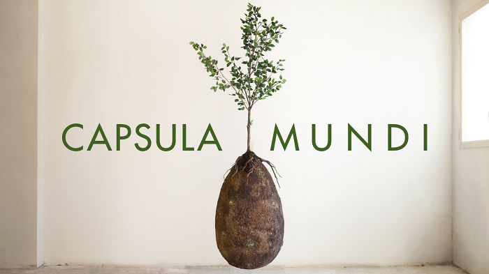 Capsula Mundi: Green Burial Project