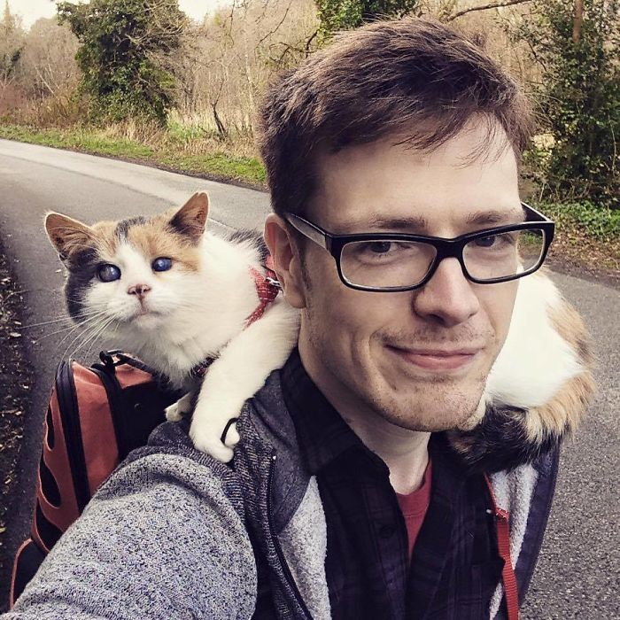 My Blind Rescue Cat Just Climbed Ireland's Highest Mountain For Charity!