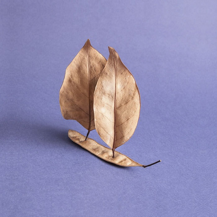 Leaf Ship