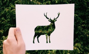 I Use Nature To Color Animal Paper Silhouettes (Part 2)