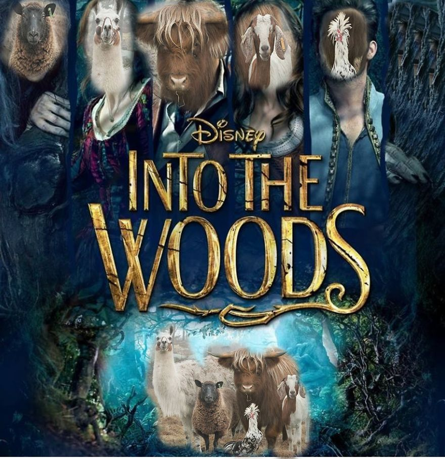 Into The Woods Main Casts