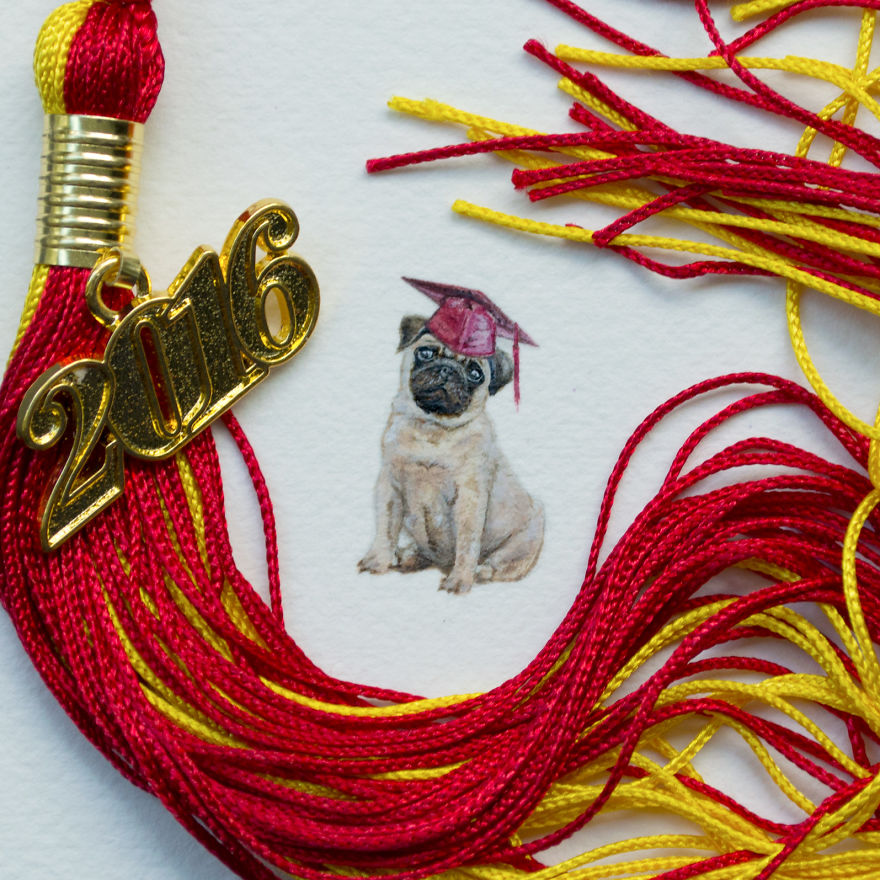 Pug. Created For My Little Brother In Commemoration For All Of His Hard Work. Congratulations To Him And The Class Of 2016!