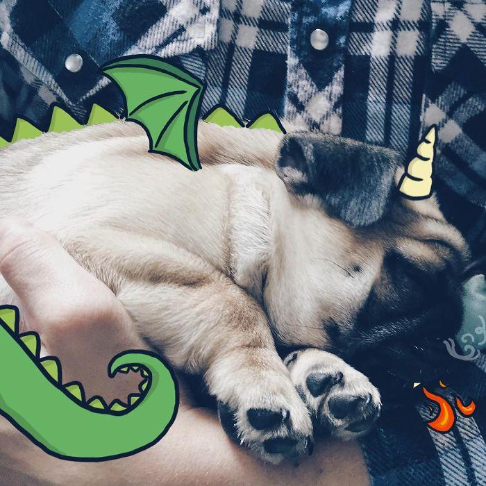 I'm A Dragon, Roaaar