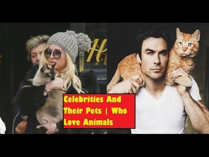 Famous Celebrities And Their Pets
