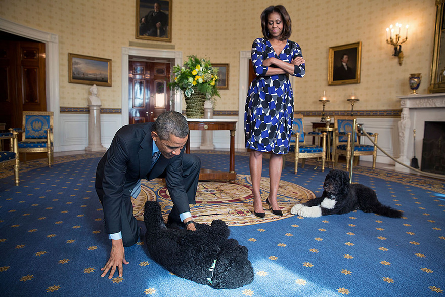 President Obama And First Lady, Joined By Family Pets Sunny And Bo, Wait To Greet Visitors In The Blue Room During A White House Tour