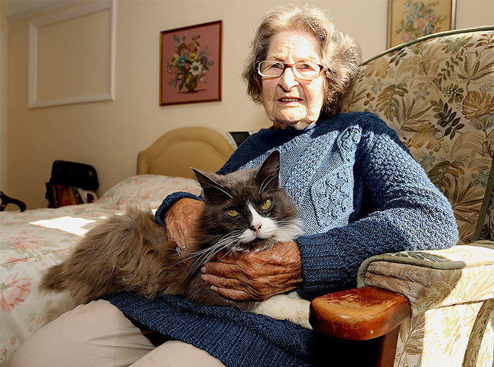 Adopted Cat Tracks Down Her Elder Owner After She Was Sent To A Nursing Home
