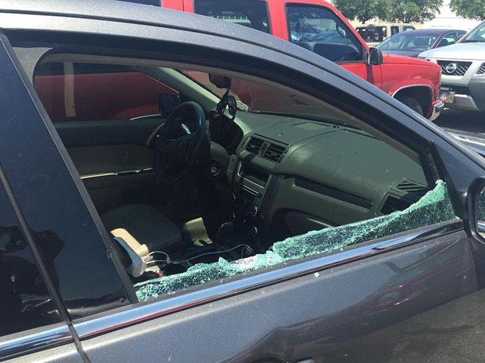 cops-save-puppy-dog-hot-car-break-window-pensacola-2