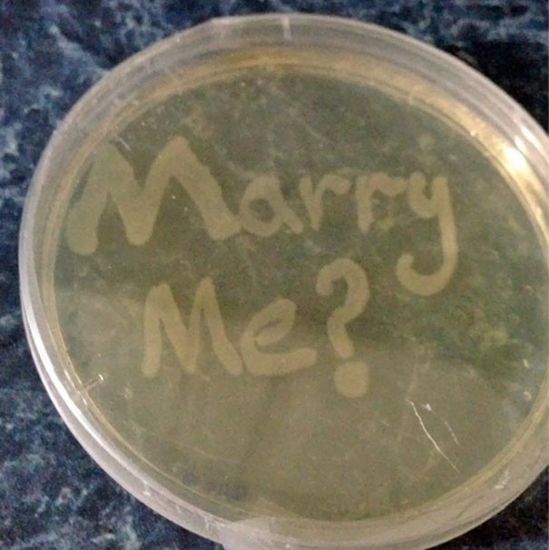 This Is How My Scientist Brother Proposed To His Girlfriend