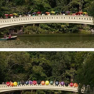 Umbrella Bridge Proposal