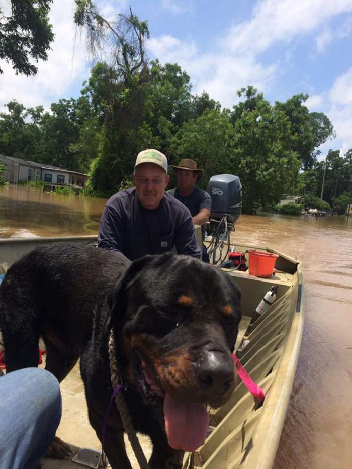 dad-son-save-dogs-flood-texas-21