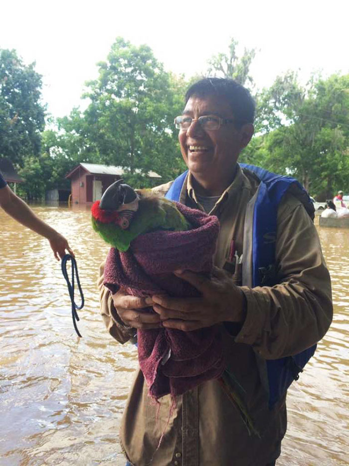 dad-son-save-dogs-flood-texas-28