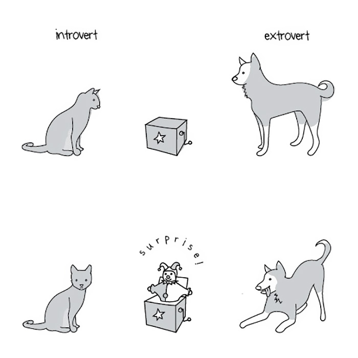 extroverts-vs-introverts-explained-liz-fosslien-mollie-west-11