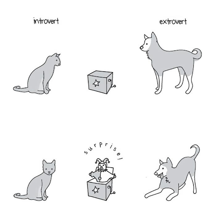 extroverts-vs-introverts-explained-liz-fosslien-mollie-west-11