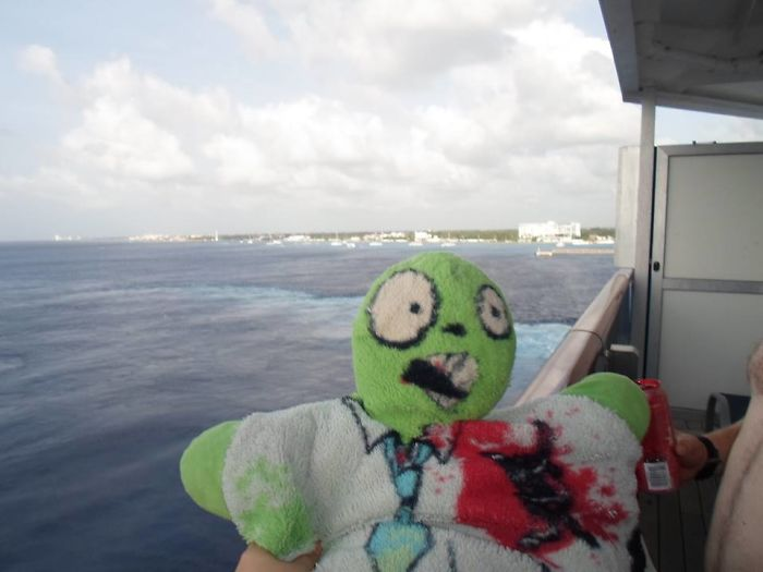 Freds' Amzing Travels