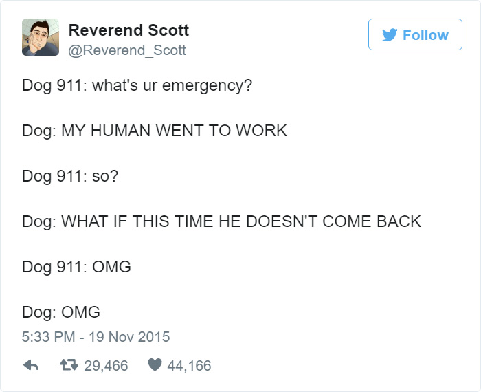 Ever Imagined A Dog Calling 911? The Result Is   Humorous