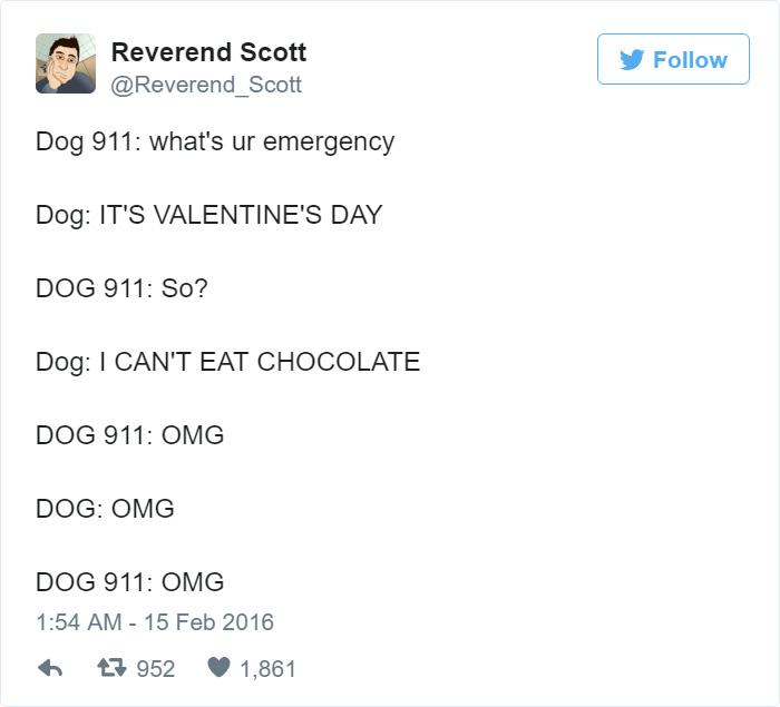 Dog 911