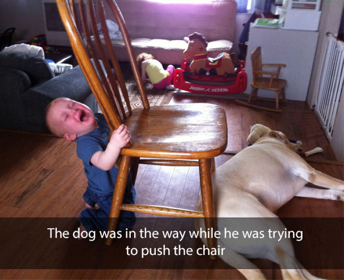 The dog was in the way while he was trying to push the chair