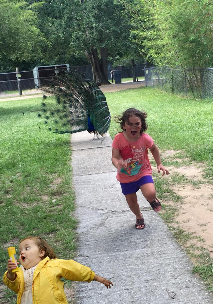 Go, Sister Go!