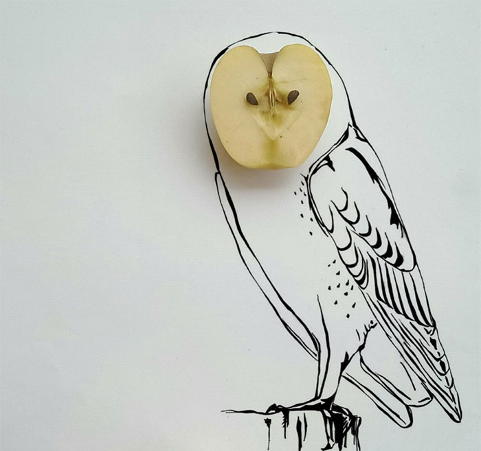 I Draw Interactive Illustrations Using Everyday Objects (part 7 )