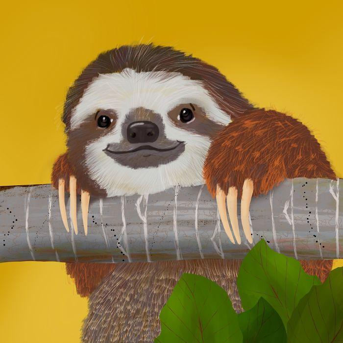 Sloth Life!