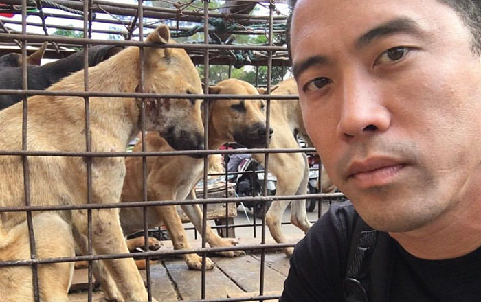 This Man Just Saved 1000 Dogs From Yulin Meat Festival Despite Being Beaten For This