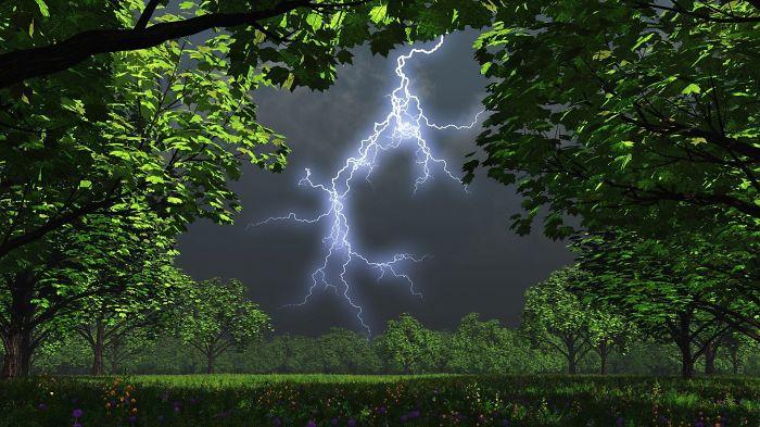 Amazing Nature Picture
