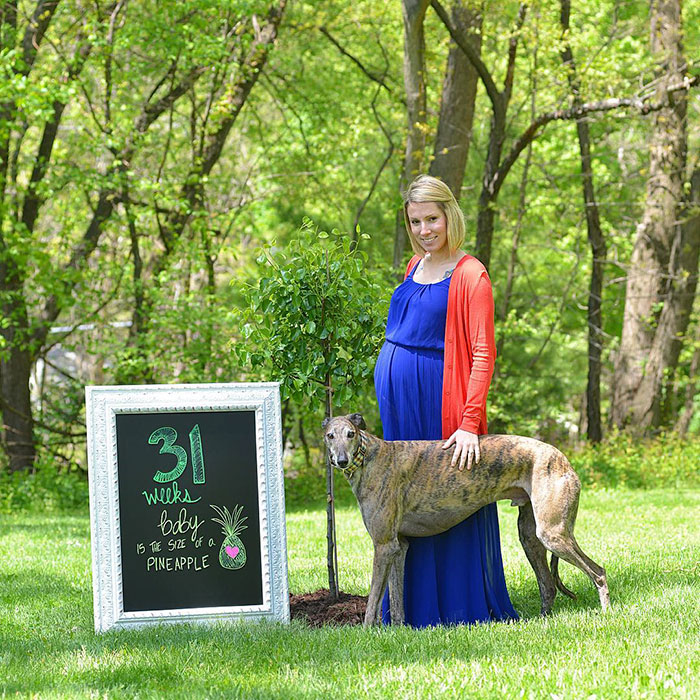 rescue-dog-loves-baby-greyhound-racing-mosley-lucas-12
