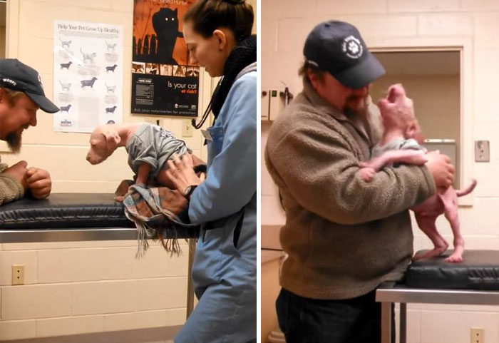 Pit Bull Pup Can't Believe His Rescuer Is Back To Adopt Him