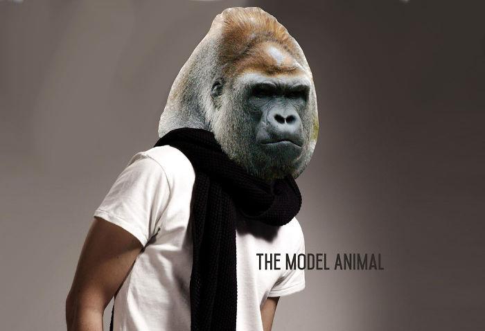I Spend Hours Imagining Model Animals