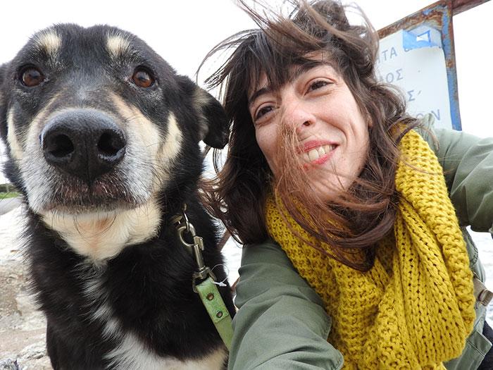 stray-dog-transform-stone-mange-petra-greece-10