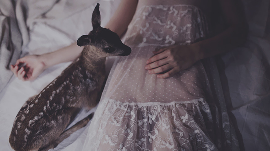 surreal-photography-people-taxidermy-laura-makabresku-4