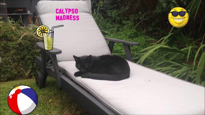 Calypso Madness Remix