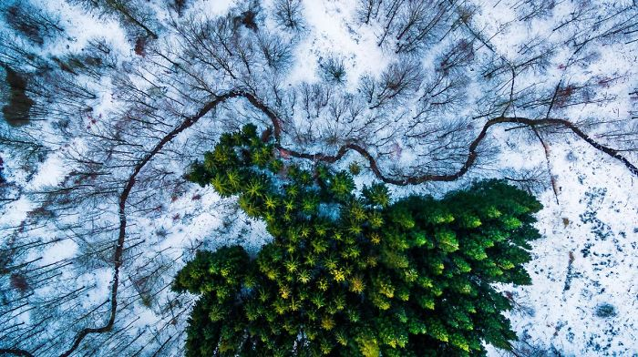 These Are The Top Drone Photos In The World