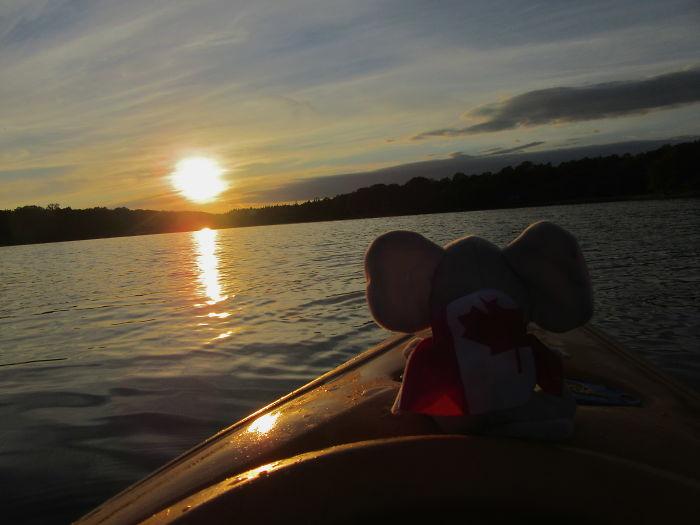 Enjoying The Sunset In Nova Scotia, Canada