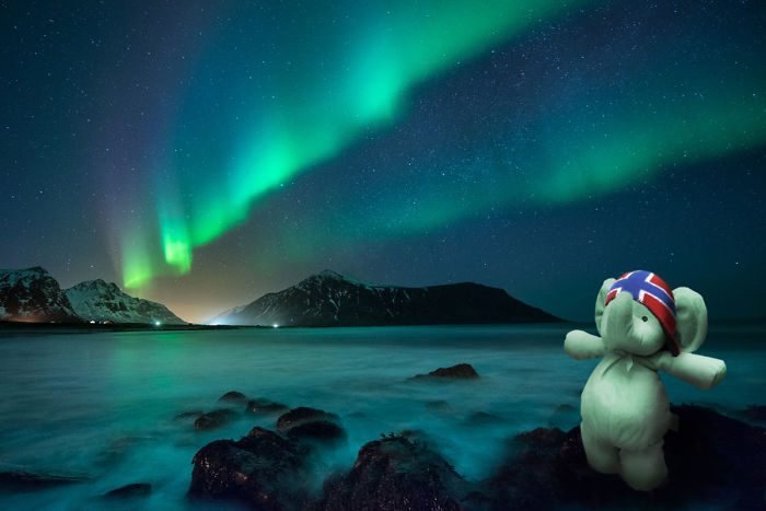 So Amazing: Aurea Borealis On Lofoten Islands, Norway