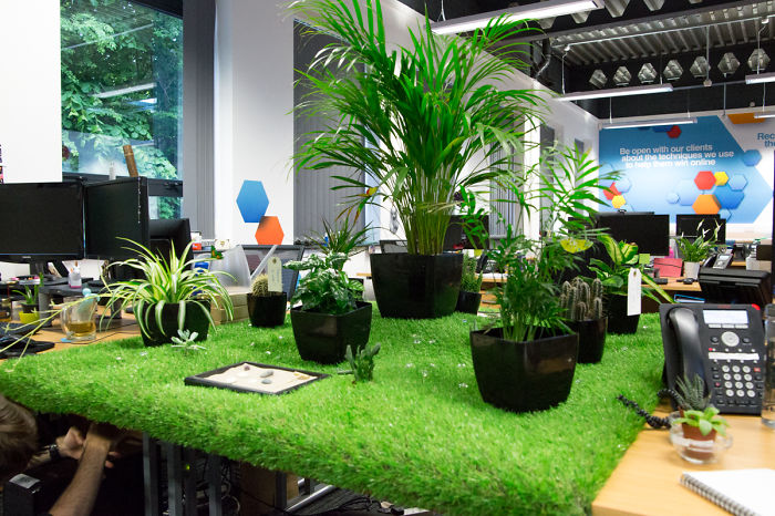 Creative Team Brought The Outdoors Into The Office With Their Own Desktop Garden